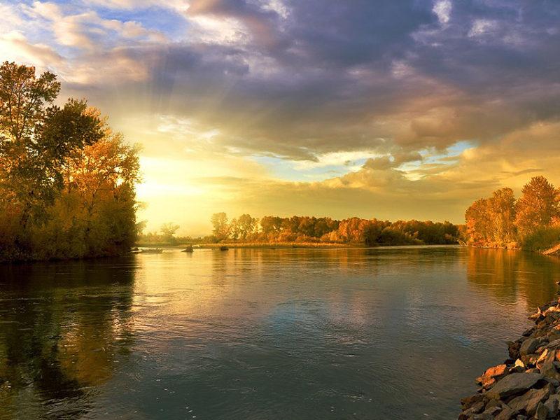 Rezerwaty przyrody